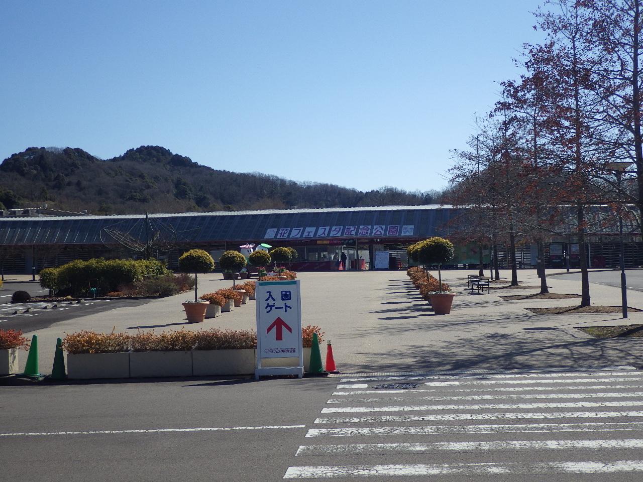 岐阜県 花フェスタ記念公園 舗装更新工事