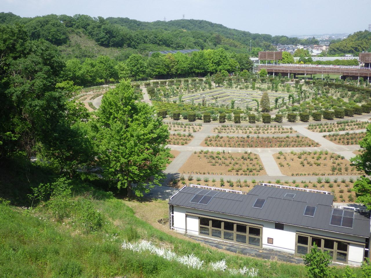 岐阜県 花フェスタ記念公園 バラ園土壌改良工事 完成